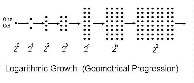Logaarithmic growth example