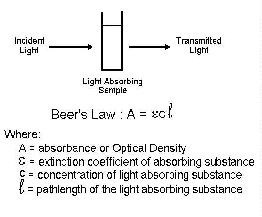Beer's law, cuvette