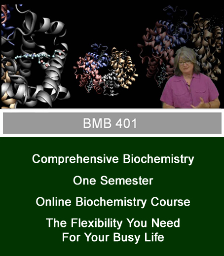 Dr. Foley and highlights of BMB 401 online